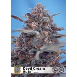Devil Cream Auto