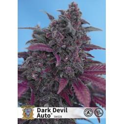 Dark Devil Auto