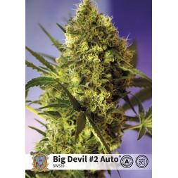 Big Devil 2 AUTO