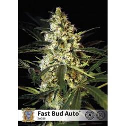 Fast Bud AUTO