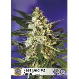 Fast Bud 2 AUTO